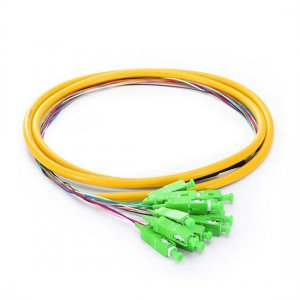 1.5M 12 Fibers SC/APC 9/125 Singlemode Bunch Fiber Optic Pigtail 0.9mm PVC Jacket