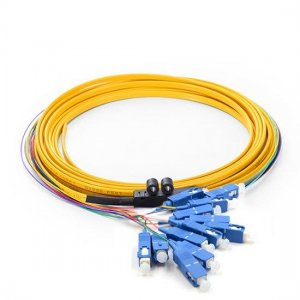 12 Fibers LC/SC/FC/ST/E2000 OS2 Siglemode Ribbon Fiber Optic Pigtail