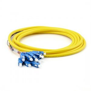 12 Fibers LC/SC/FC/ST/E2000 OM1/OM2 Multimode Bunch Fiber Optic Pigtail