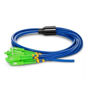 12fiber 3.0mm 9/125 Singlemode LC/SC/ST/FC Armored Bunch Fiber Optic Pigtail