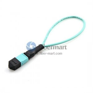 40GBASE QSFP MTP/MPO 12 Fiber OM3 Female Loopback Cable
