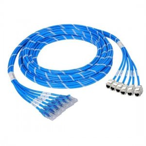 12 Jack to 12 Plug CAT6A Shielded PreTerminated Copper Trunk Cable