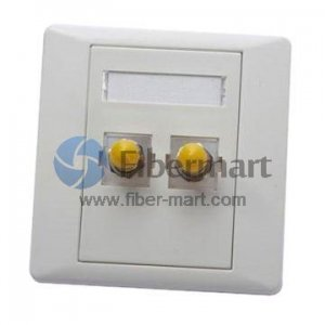 2-Port ST Fiber Optic Wall Plate Outlet