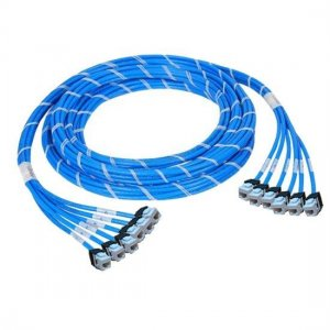 10m (32.8ft) 12 Jack to 12 Jack CAT6 Unshielded LSZH(Blue) PreTerminated Copper Trunk Cable