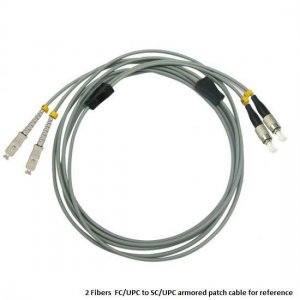 Custom E2000 UPC to E2000 UPC 4 Fibers OM1/OM2 Multimode Armored Breakout Cable 3.0mm Legs