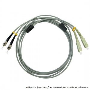 Custom E2000 UPC to E2000 UPC 12 Fibers OM1/OM2 Multimode Armored Breakout Cable 3.0mm Legs