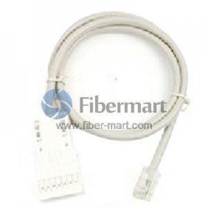 1m 1 Pair Cat 5e 110 to RJ45 Patch Cable