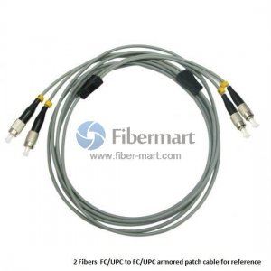 FC/UPC to FC/UPC 50/125 OM2 MM 12 Fibers Armored Patch Cable
