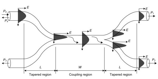 Fiber Optic Couplers and Splitters Tutorial :
