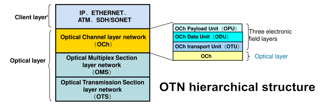 OTN hierarchical structure
